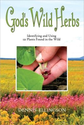 GOD'S WILD HERBS : Identifying and Using 101 Plants Found in the Wild