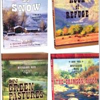 Colorado Stories