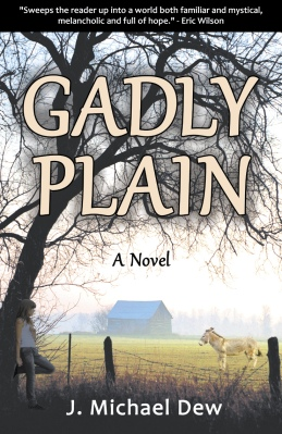 GADLY PLAIN: A Novel by J. Michael Dew