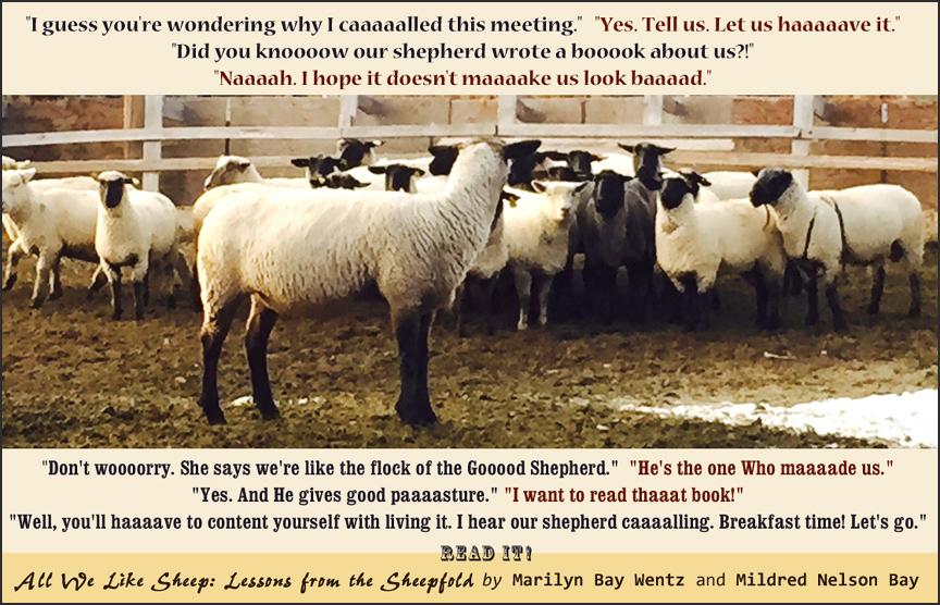 Sheep-meeting-poster