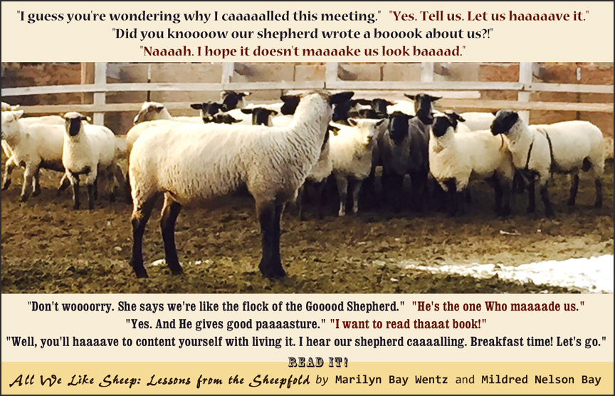 Sheep-meeting-poster