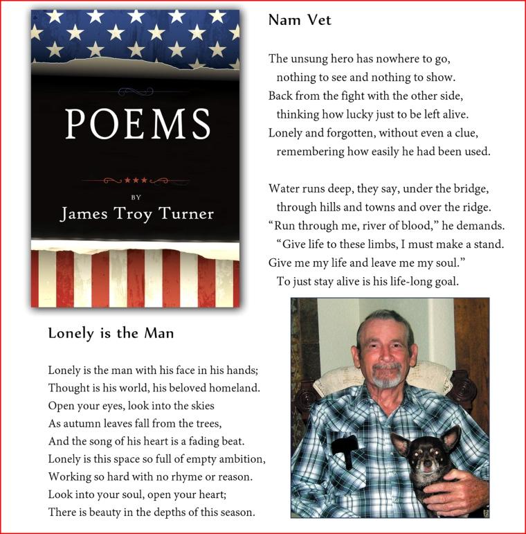 A Vietnam Vet Poet